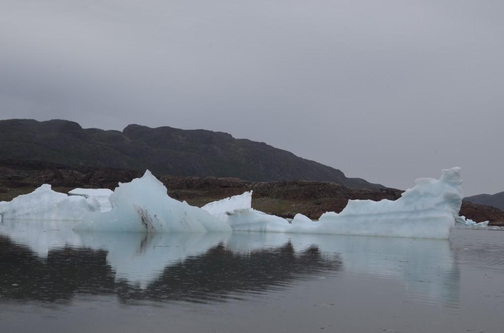 Isbjerge i Sermilik fjordren